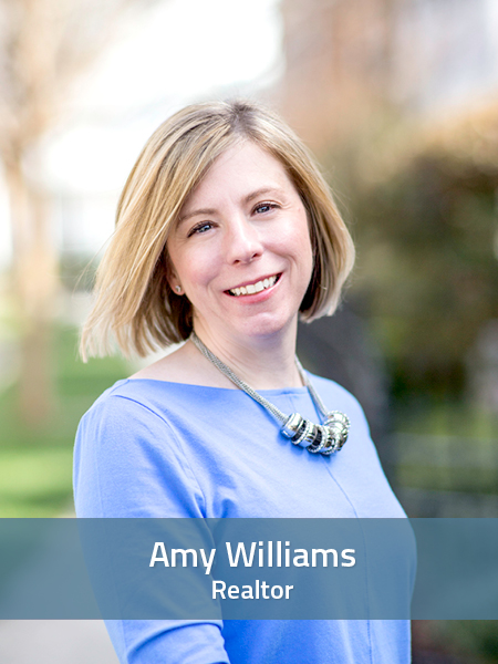 Amy Williams at homes realty group 2015