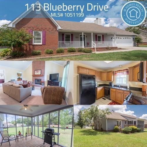 113 Blueberry